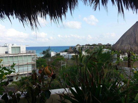 Porto Playa Condo Hotel & Beachclub: View from Unit 220 Rooftop patio