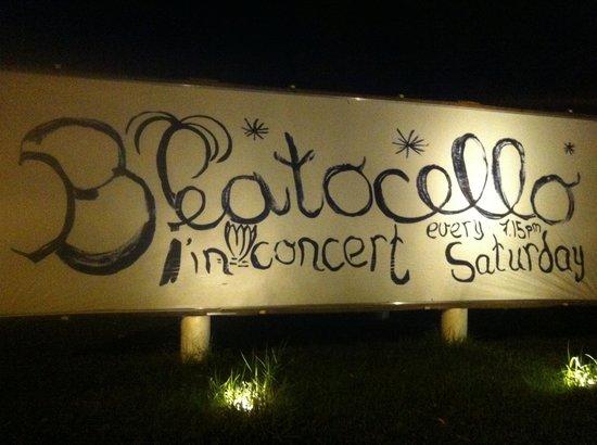Beatocello Concert: Beatocello!