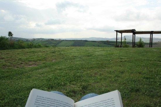Agriturismo Ca' Nick: Giardino: sdraio per leggere un buon libro con tutta la pace intorno