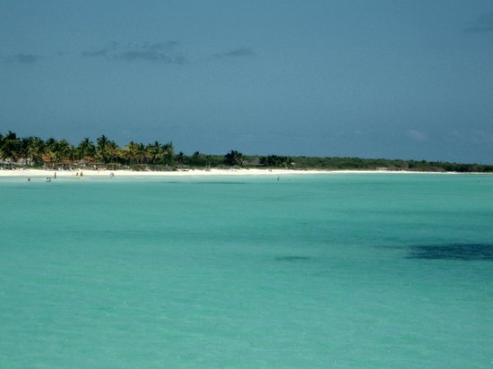Melia Cayo Guillermo : View from glass bottom boat excursion