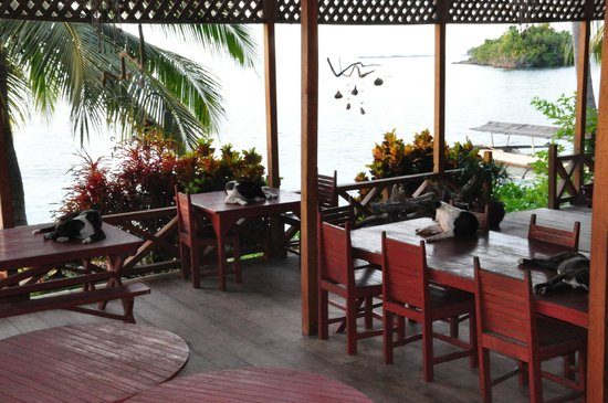 Island Retreat: restaurant