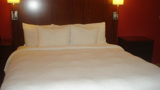 Residence Inn by Marriott Atlanta Buckhead : king bed