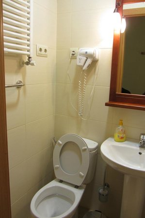 Hostal Tirso Plaza : Small Bathroom