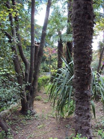 La Vagance: Le Parc