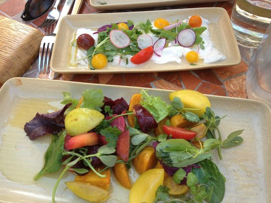 Mateo's Cocina Latina : Beet salad and fresh ceviche
