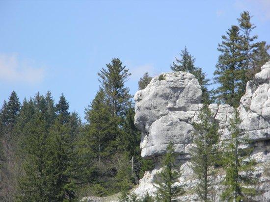 Bateaux du Saut du Doubs : Tête de sphinx