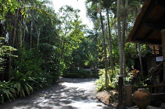 Somkiet Buri Resort: Inside Hotel Premise