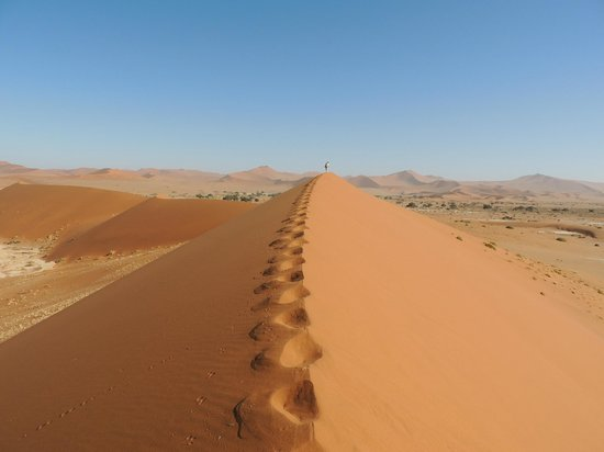 Hoodia Desert Lodge照片