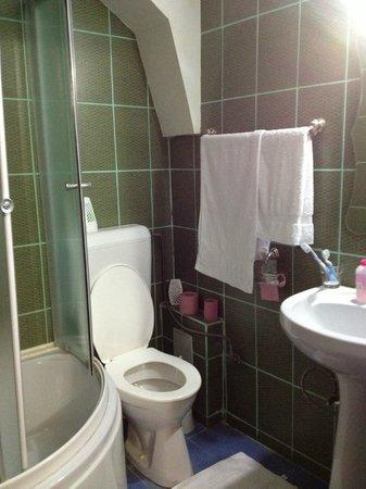 Pensiunea Casa Samurai: toilet