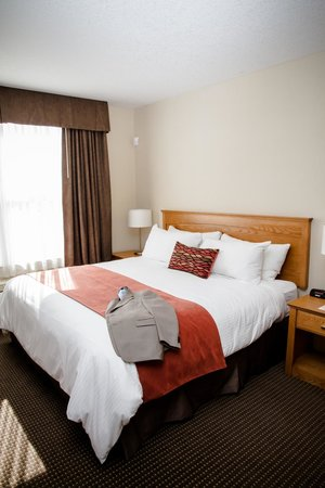 Cambridge Hotel and Conference Centre : Guest room