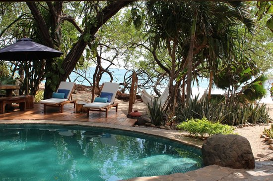 Sueno del Mar Beachfront Bed & Breakfast: The Pool at Sueno Del Mar