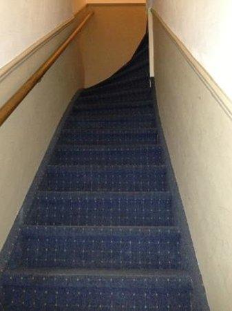 Haarlem Hotelsuites: The alpine staircase!