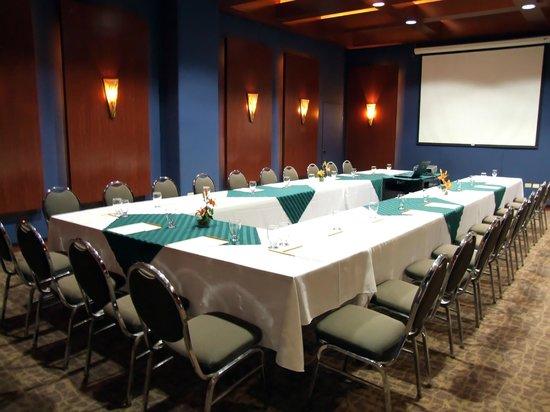 Hotel Santa Anita: Salón de Eventos Especiales