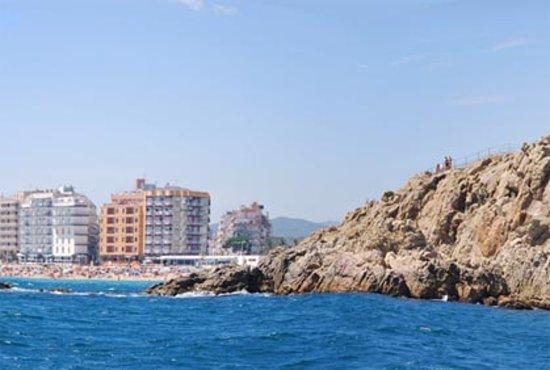 Elvira Apartamentos : Vista desde el puerto