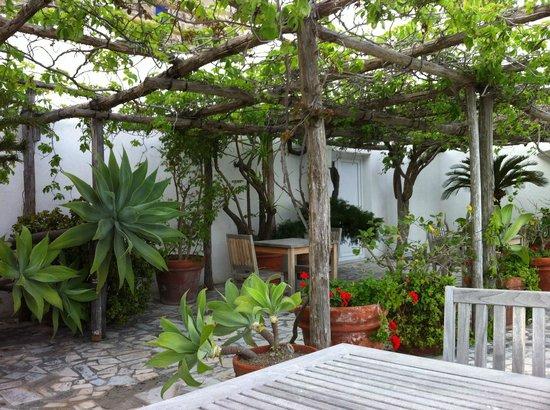 Hotel Casa Sofia : La pergola côté plantes & fleurs