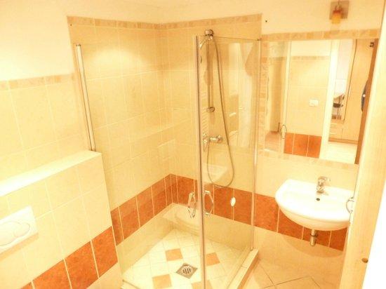 Jimi Hendrix Guesthouse: Raday studio bathroom