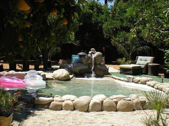 Acacia Mansion : Dipping pool