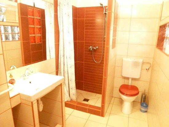 Jimi Hendrix Guesthouse: Apartment bathroom