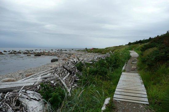 Wildflowers Country Inn: Ocean View Walk