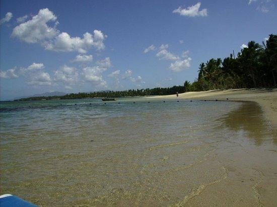Grand Bahia Principe El Portillo: playa del hotel de dia
