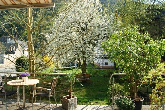 Hotel Dehren : Gartenaussicht