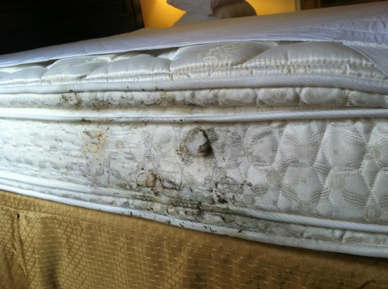 Greensprings Vacation Resort: Mattress on unmade bed
