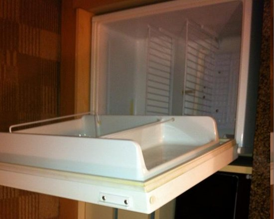 Embassy Suites by Hilton Hotel San Rafael - Marin County / Conference Center: Fridge in Room