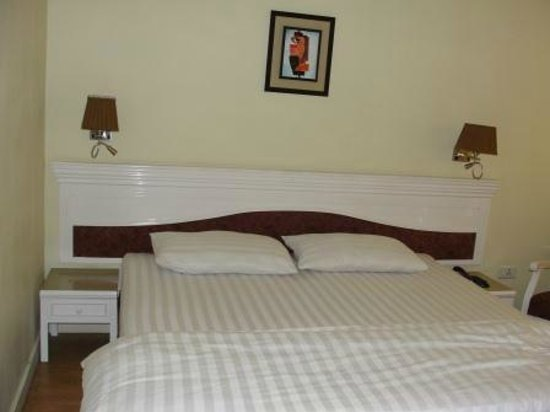 Hotel Alpine Continental : Executive room