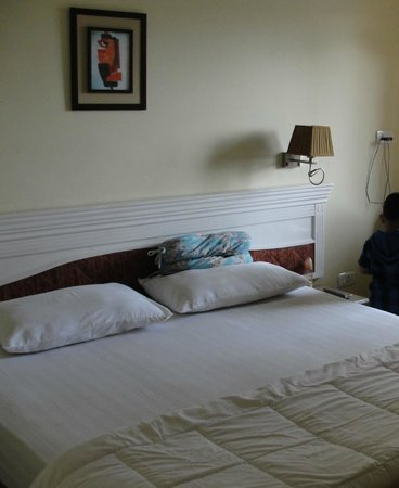 Hotel Alpine Continental : Another view of the room