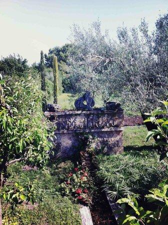 Un particolare del giardino della Fattoria del Casaro
