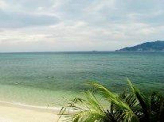 Tri Trang Beach Resort: Пляж.Вид сверху.
