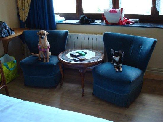 Hotel - Restaurant Beau Sejour: Les chiens sont admis