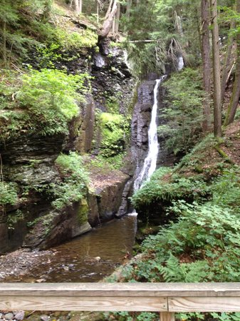 Deerfield Health Retreat and Spa: Needle Falls Hike