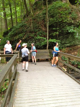 Deerfield Spa: Needle Falls Hike