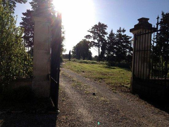 Moulin de La Quenin : l'allée pour accéder à la Demeure