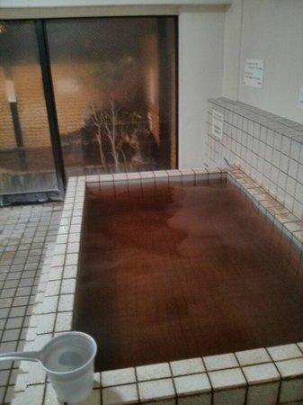Hotel Edoya: bañera del onsen
