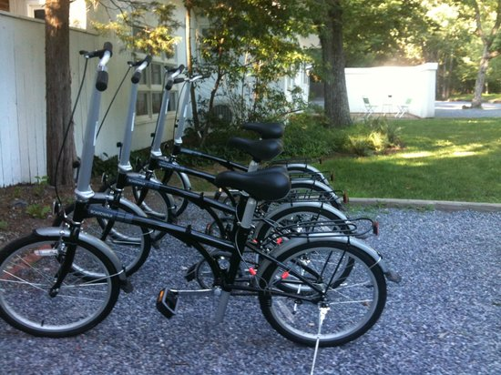 Forever Bungalows: Bicycles for rent