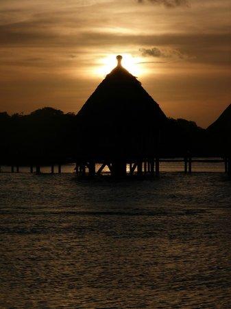 Coral Lodge: Paisaje exótico