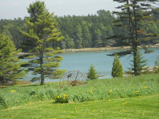 SpinnAcres Alpaca Farm Retreat: Our waterfront view