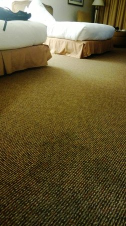 Hilton Bellevue Hotel: Stained carpet
