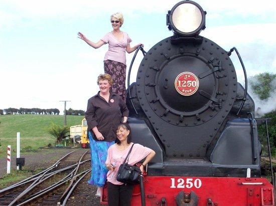 Glenbrook Vintage Railway: Vintage fans!