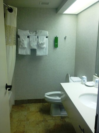Hampton Inn Columbia-I-26 Harbison Boulevard: bath
