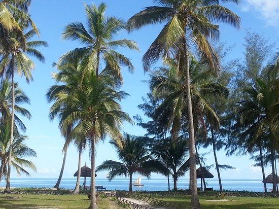 Butiama Beach: vista dal boungalow