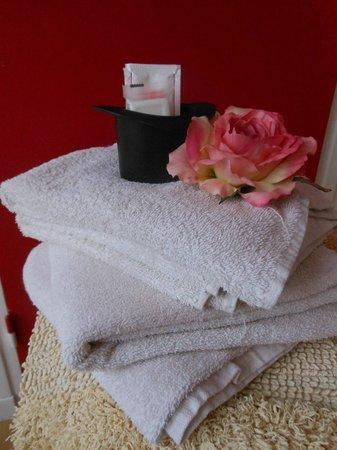 Villa les Aiguades: linge de toilette fournit