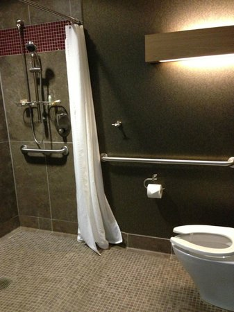 CityFlatsHotel - Holland : Open style shower room