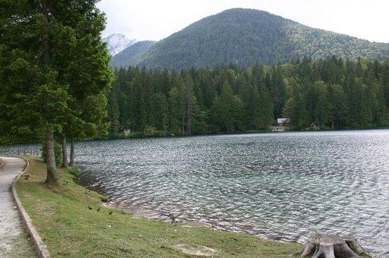 Albergo Edelweiss: direttamente sul lago