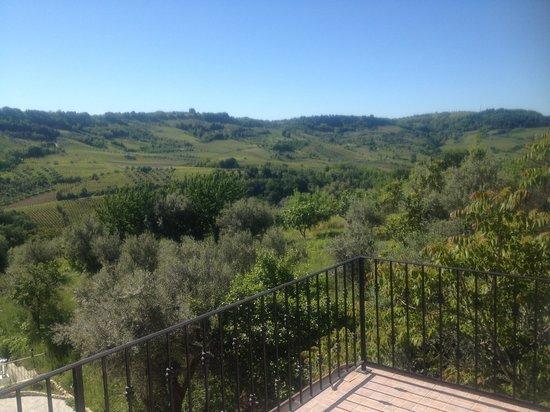 Agriturismo Montupoli: Panorama visto dal terrazzino della camera