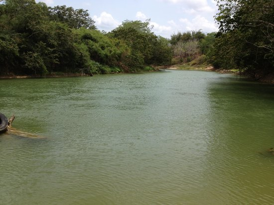 NCQ Belize Adventure Tours : Belize river