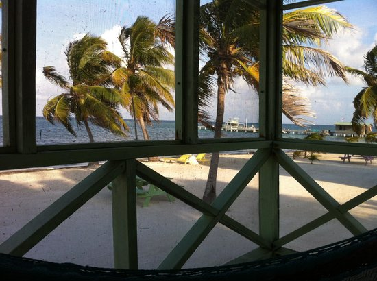 Blackbird Caye Resort: View from our palapa.
