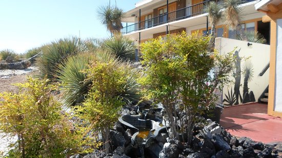 Landmark Lookout Lodge: the property is landscaped, with fountains...